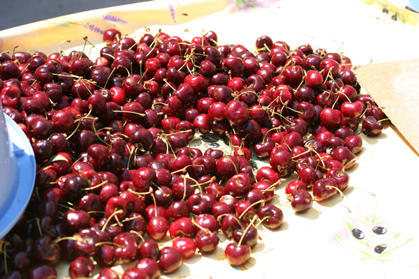 Cherries in a Provence farmer's market