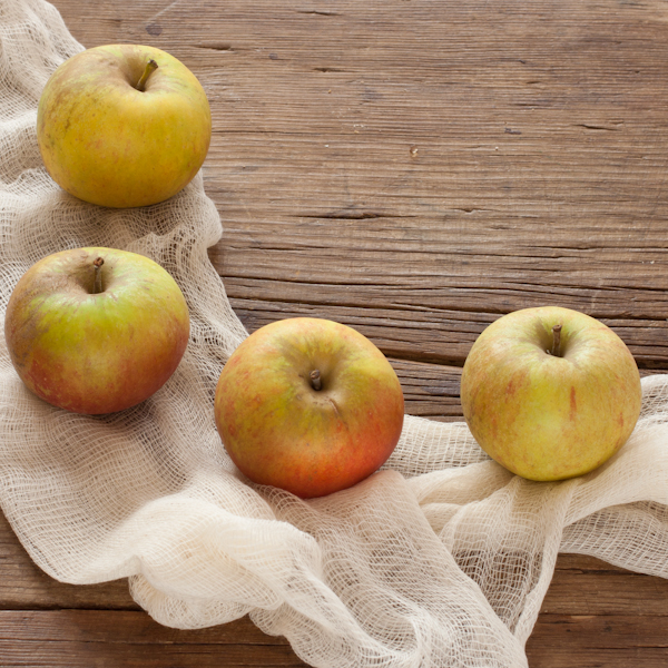 Ribston Pippin Heirloom Apples | Recipe Renovator